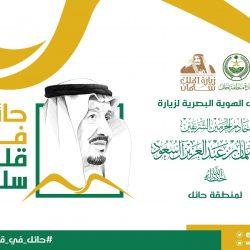 إمارة حائل تطلق الهوية الرسمية لزيارة الملك سلمان للمنطقة