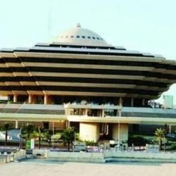 غنم للبيع عدد 170 راس بمدينة الأجفر